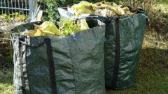 Prolongation de la collecte hebdomadaire des déchets verts